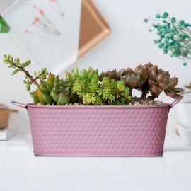 H&P Flower Pot - Pink