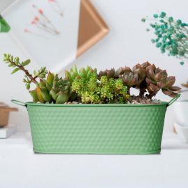 H&P Flower Pot - Green