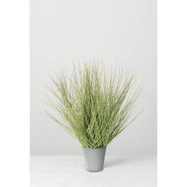 H&P Flower Pot - White