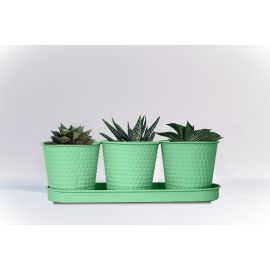 H&P 3-Flower Pot with Stand Set - Green