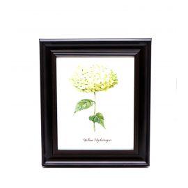 Yellow Hydrangea Framed Wall Art - 28 x 33 cm