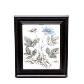 Blue Flower Framed Wall Art - 28 x 33 cm