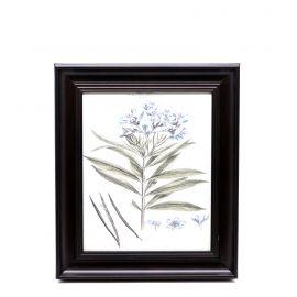 Blue Flowers Framed Wall Art - 28 x 33 cm
